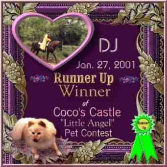Coco's Castle Pet Contest